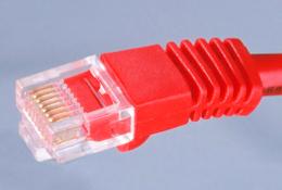 Imagen de un conector de red de datos